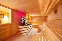 Vente de sauna a Annemasse